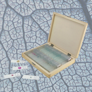 Accesorios para microscopios